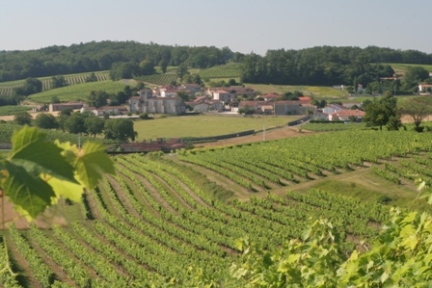 cognac_countryside1
